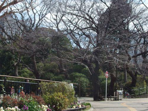亀塚公園 - 「竹芝寺伝説」を今に伝える・屋敷跡に整備された公園