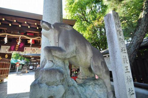 狛犬ならぬ、狛猪でおなじみ!和気清麻呂を祀る護王神社へ