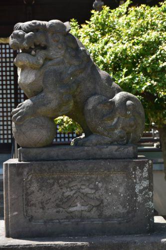 新曽氷川神社の狛犬達