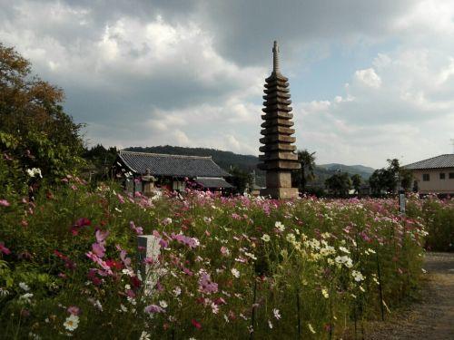 10月19日 般若寺(奈良市)でいただいた御朱印