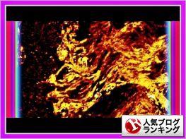"""""""東京『愛宕神社;弁天池』錦鯉:合間に【龍神様】出現❢❢"""""""