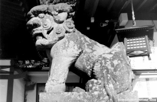 狛犬たちのモノローグ  File745  深志神社  其の弐