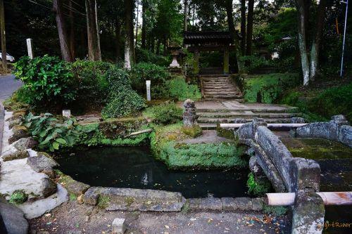 鎌倉江の島七福神 その八 浄智寺 布袋尊