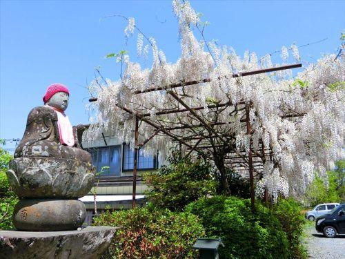 花と仏像の寺 秩父観音 第12番 野坂寺