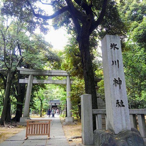 東京十社巡り⑤赤坂氷川神社
