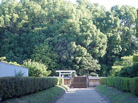 JR奈良駅から東大寺に向けて徒歩で移動、開化天皇、春日率川坂上陵も