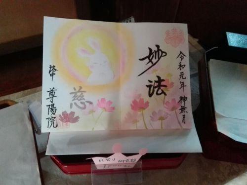 10月8日 尊陽院(京都市)でいただいた直書きの見開き御朱印