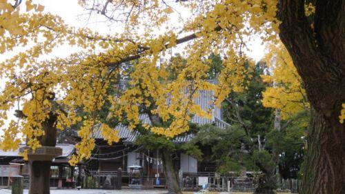 仙台市 陸奥国分寺
