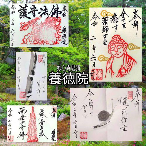 【京都】7月から月例御朱印は第1(土)(日)となる「養徳院」でいただいたステキな【御朱印】