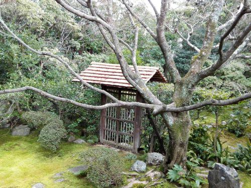1月24日 妙心寺桂春院(京都市)でいただいた期間限定の見開き御朱印