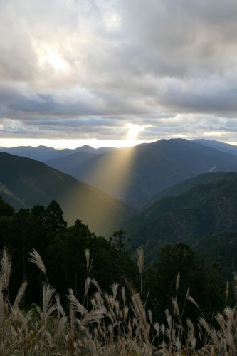 玉置神社・神々が降り立つ霊峰の白石