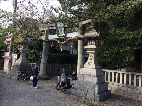 【遡上徘徊】箕面川<2>池田八坂神社(神田)