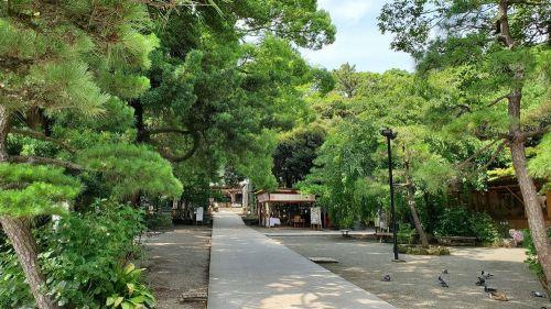 神奈川県平塚市にある「平塚八幡宮」の参拝記録 - しんちゃんの部屋