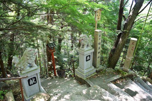 太郎坊阿賀神社(滋賀県東近江市)の写真と御朱印④