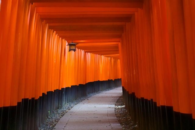 平和を祈ります 伊勢神宮にお参りしましょう.内宮参道のサザンカの花。可憐です好きな...