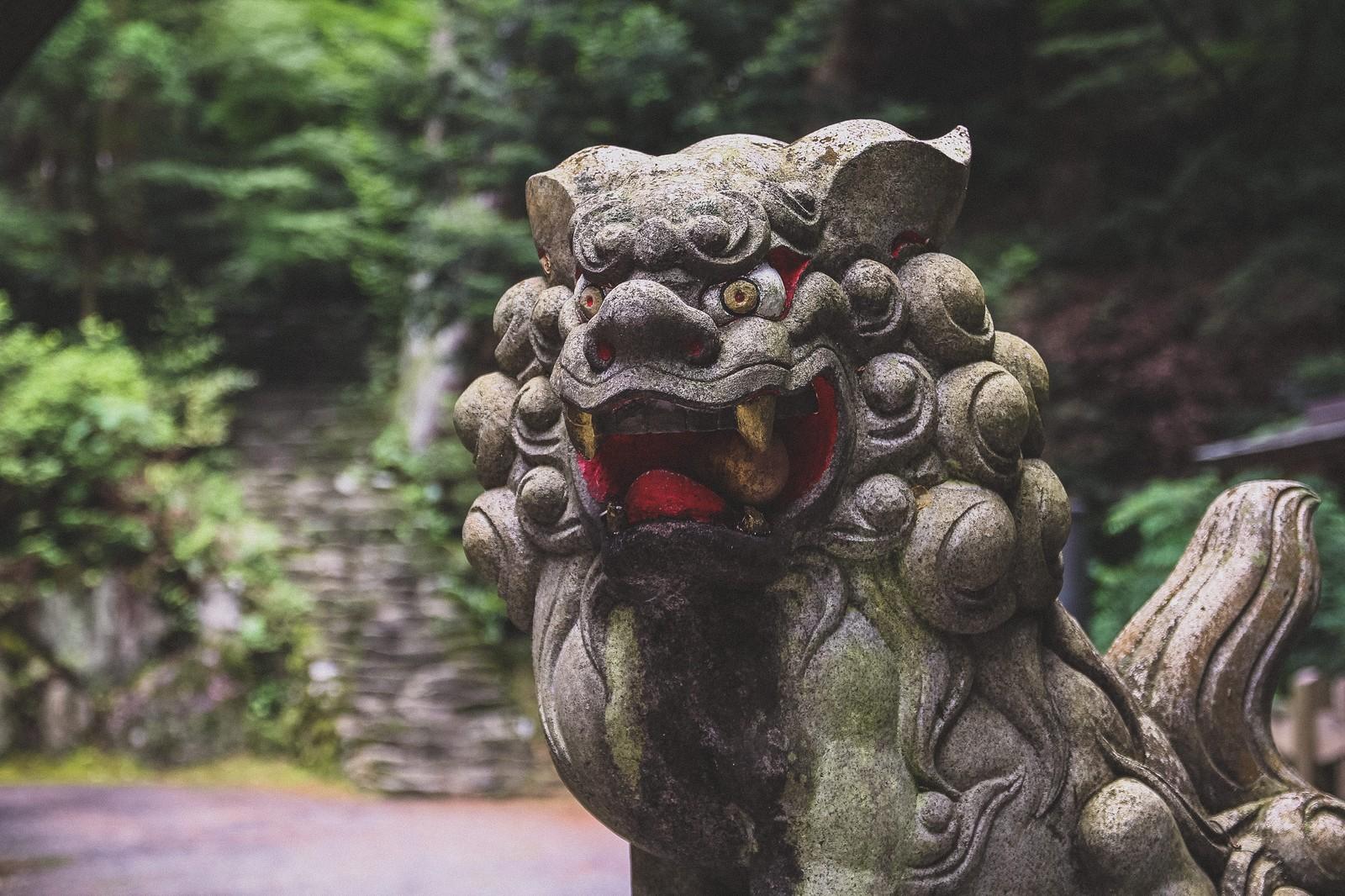 横田神社の紅葉 2021年の見頃は?|長野県松本市